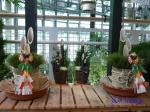 渋谷区ふれあい植物センター_7