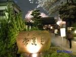 西新宿常圓寺の桜_2