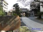 西新宿常圓寺の桜_11