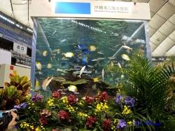 沖縄美ら海(ちゅらうみ)水族館