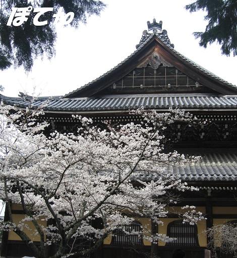 2013南禅寺