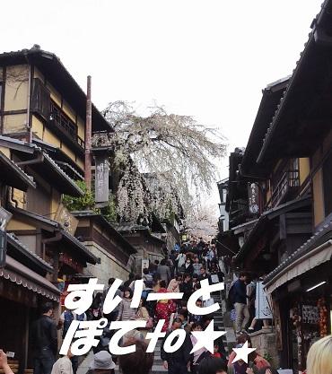 2013桜8