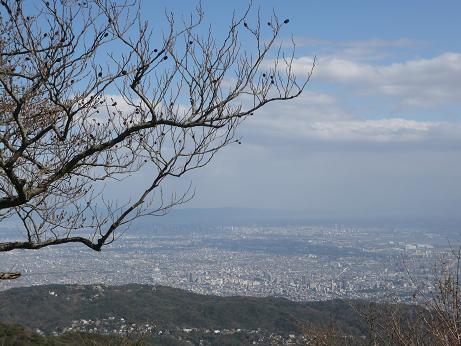 最高峰からの景色