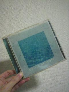 P1001221.jpg