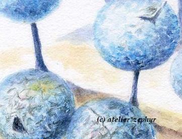 水彩色鉛筆原画 制作途中 ルリホコリ