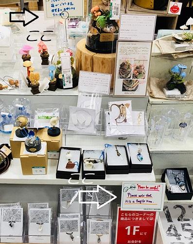 夜の博物館 東急ハンズ心斎橋店展示風景