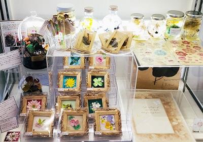 Botanical Forest展 atelier*zephyr作品