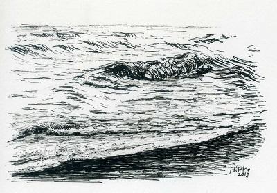 ペン画 海