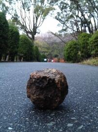 丸い石a11