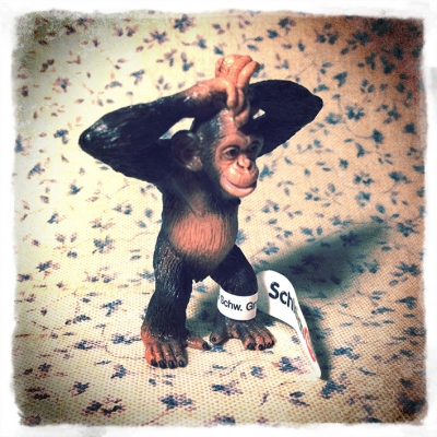 猿 ときどき*カメラ