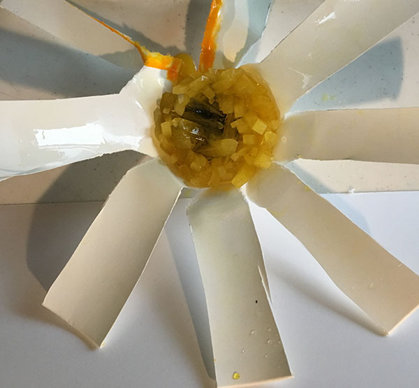 檸檬水晶育成キット