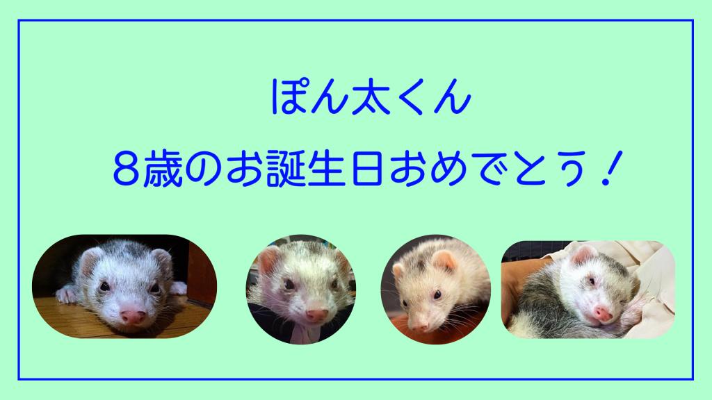 youtubeぽん太のお誕生日2018