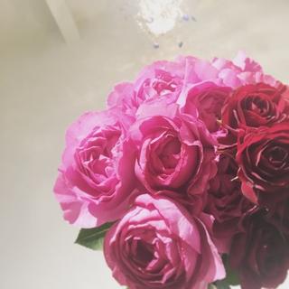 バラ,プレゼント,本数,意味