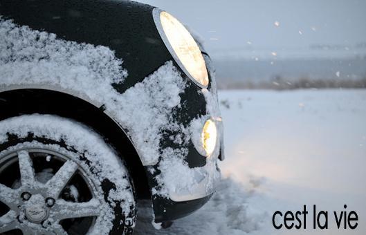 従兄弟の車で雪ドライブ