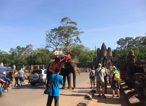タ・プローム 遺跡 カンボジア アンコールワット 世界遺産