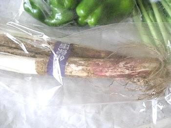 オイシックスの野菜4