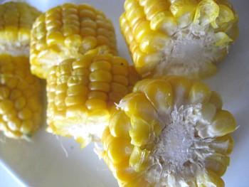 トウモロコシ2