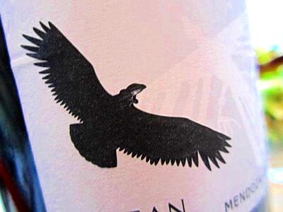 cabernet sauvignon (16).JPG