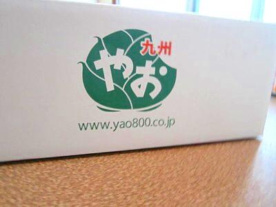 やお九州7月 (1).JPG