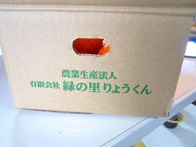 九州のみかん (13).JPG
