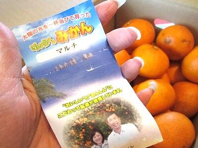 九州のみかん (11).JPG