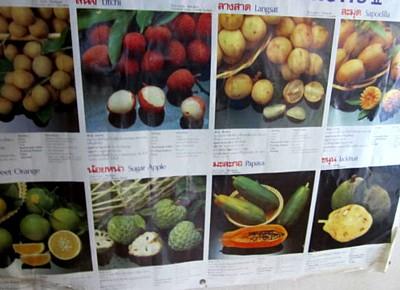アジアのフルーツ (4).JPG