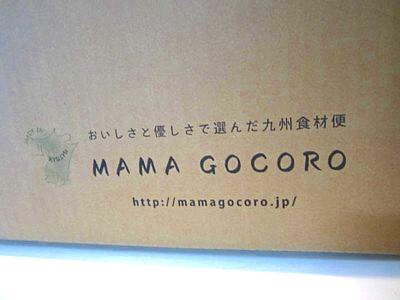 ママゴコロ (1).JPG
