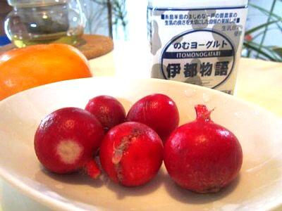ラディッシュと飲むヨーグルトの和え物 (2).JPG