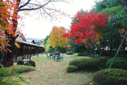 紅葉が美しい庭の様子