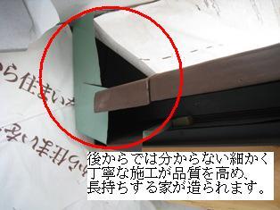 IMG_0477-2.jpg