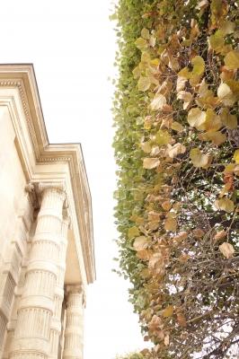 オランジュリー美術館2