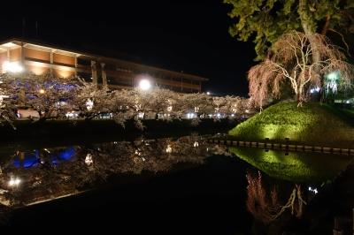 弘前夜桜3