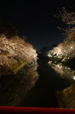 弘前夜桜4