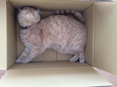 i love box2