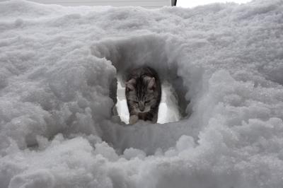 雪のトンネル