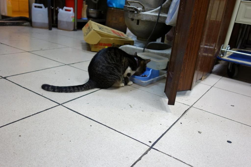 世界豆奨大王看板猫