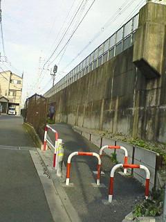 NEC_0657.jpg