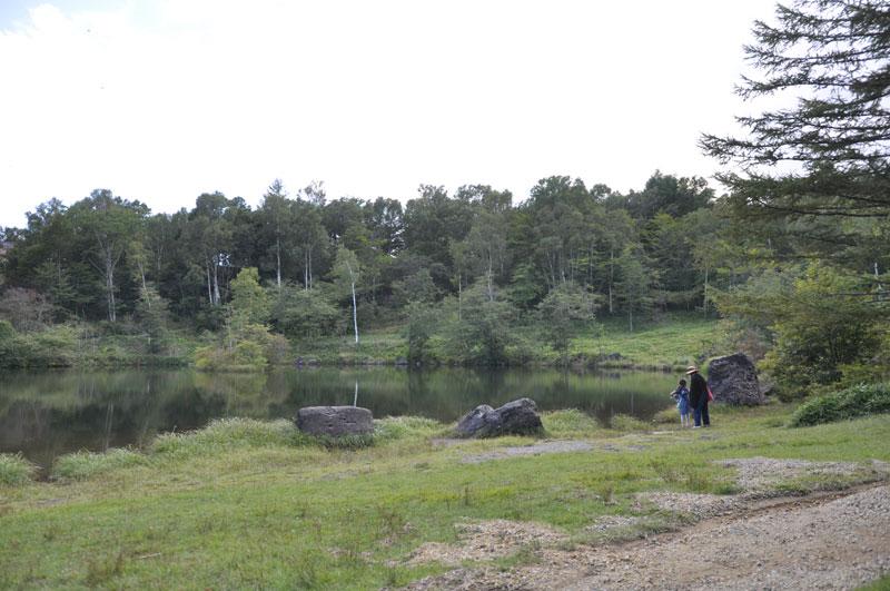 pond3.jpg