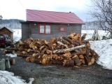 130413薪原木搬入