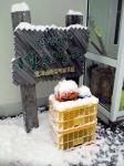 161031_積雪