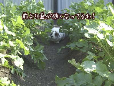 20071208_3.jpg