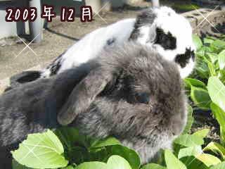 20071221_3.jpg
