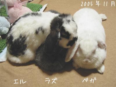 20071222_2.jpg