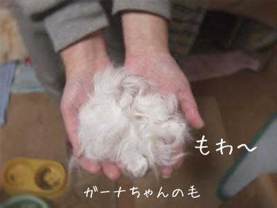20080104_1.jpg