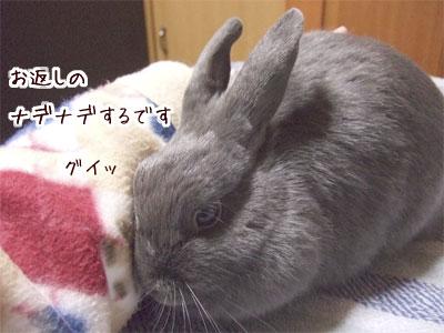 20080106_4.jpg