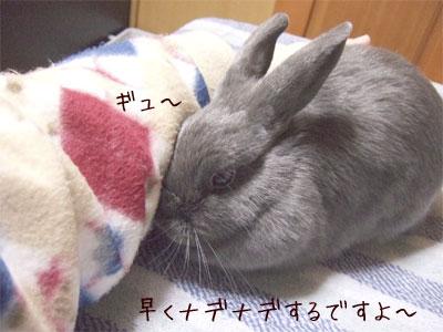 20080106_5.jpg