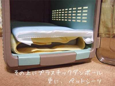 20080614_5.jpg
