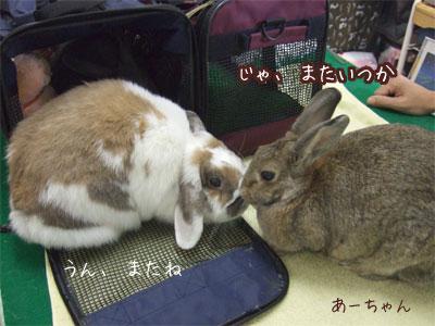20081013_4.jpg