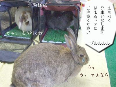 20081013_7.jpg