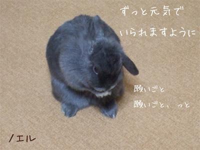 20081014_7.jpg